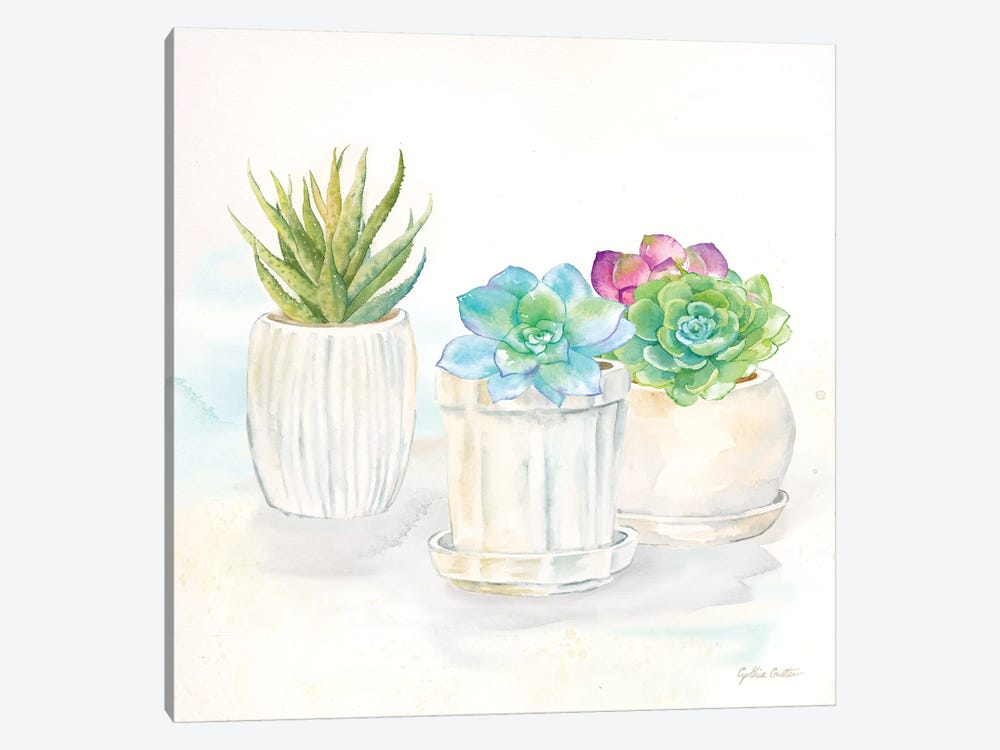 Sweet Succulent Pots IV by Cynthia Coulter 1-piece Canvas Art Print