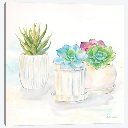 Sweet Succulent Pots IV 3-Piece Canvas #CYN99} by Cynthia Coulter Canvas Art Print