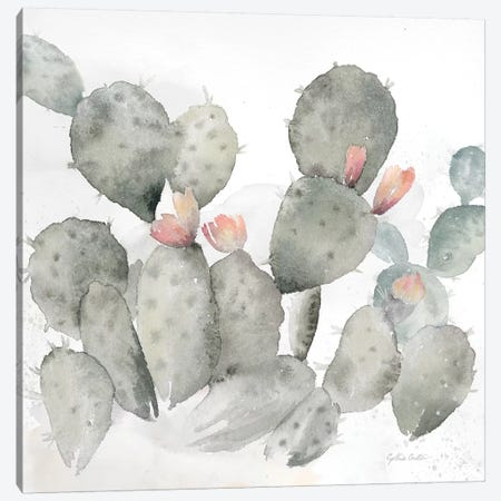 Cactus Garden Gray Blush I Canvas Print #CYN9} by Cynthia Coulter Canvas Wall Art