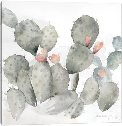 Cactus Garden Gray Blush I Canvas Art Print