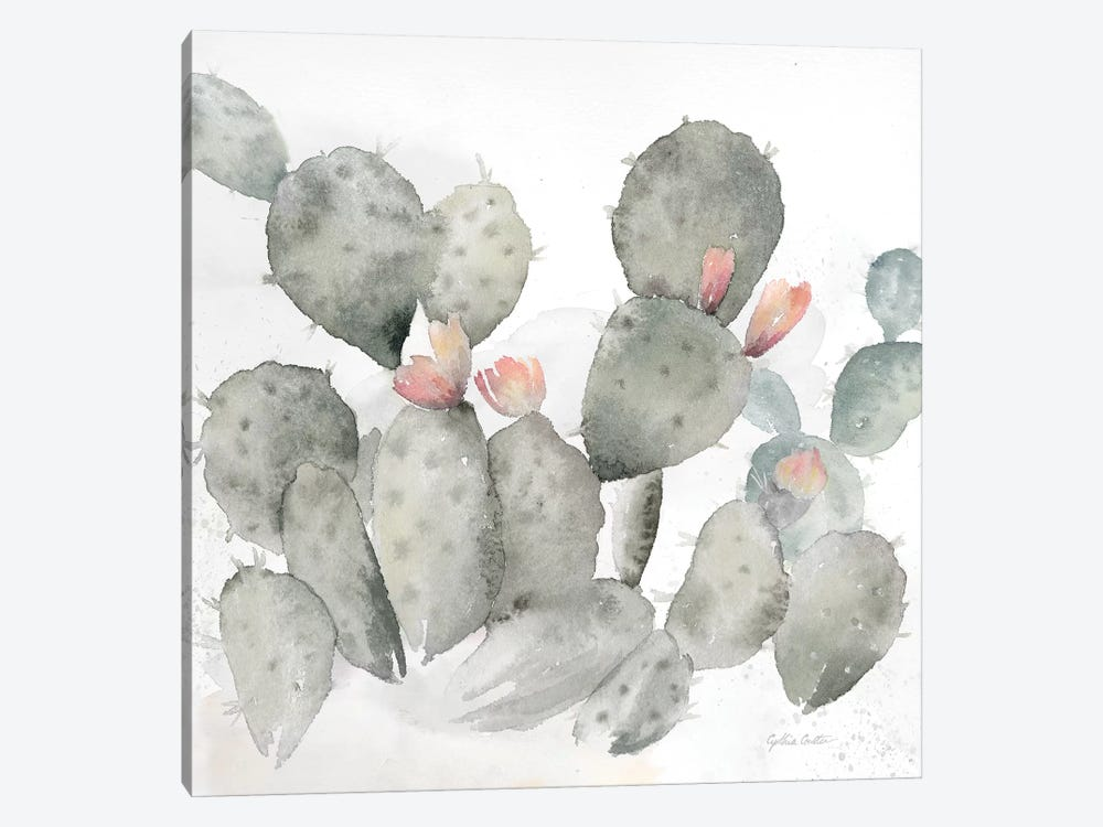 Cactus Garden Gray Blush I by Cynthia Coulter 1-piece Canvas Art Print