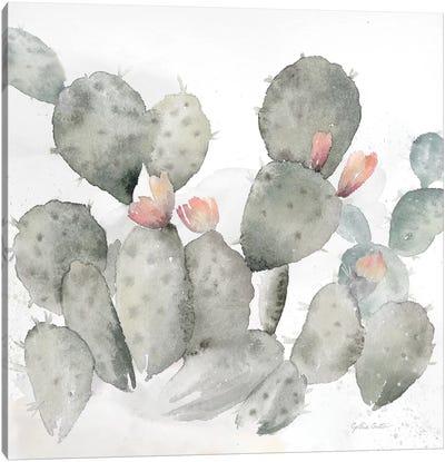 Cactus Garden Gray Blush I Canvas Art Print