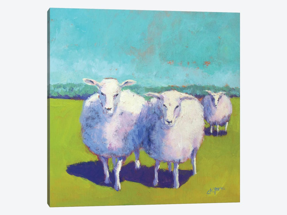 Sheep Pals I by Carol Young 1-piece Canvas Wall Art