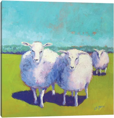 Sheep Pals I Canvas Art Print