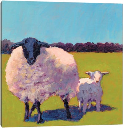 Sheep Pals III Canvas Art Print