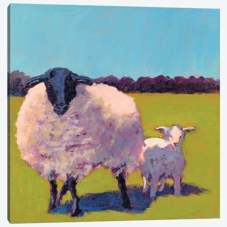 Sheep Pals III Canvas Print #CYO13} by Carol Young Canvas Wall Art