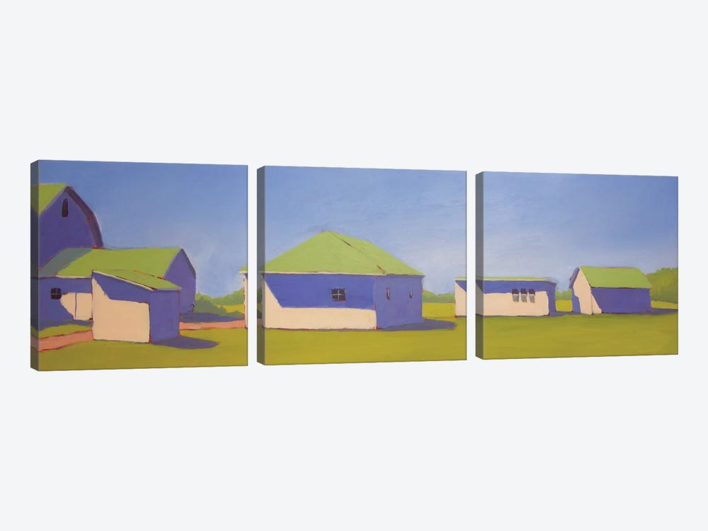 Sunny Outlook by Carol Young 3-piece Art Print