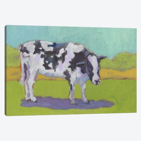 Pasture Cow I Canvas Print #CYO18} by Carol Young Canvas Art