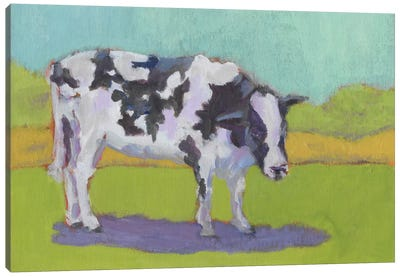 Pasture Cow I Canvas Art Print