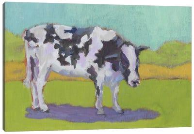 Pasture Cow I Canvas Art Print