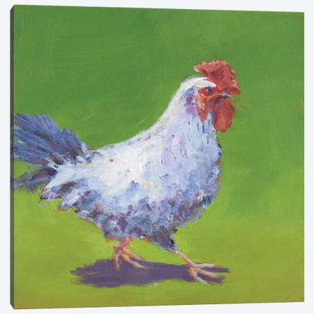 Pasture Henrietta I Canvas Print #CYO20} by Carol Young Canvas Art Print