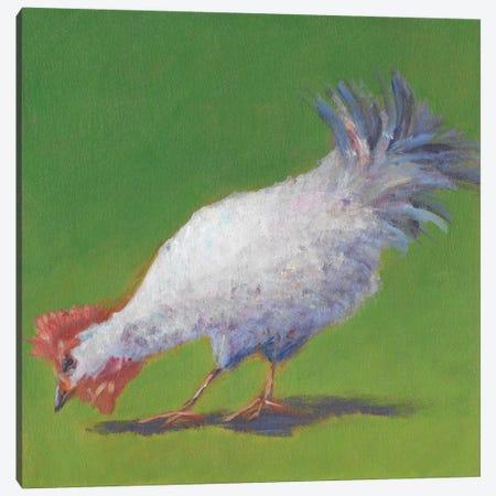 Pasture Henrietta II Canvas Print #CYO21} by Carol Young Canvas Art Print