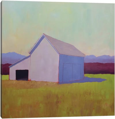 Primary Barns IV Canvas Art Print