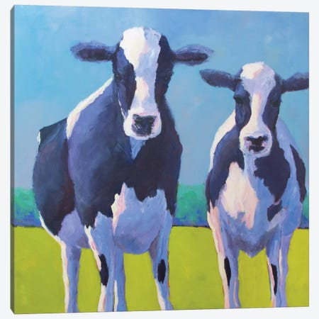 Cow Pals II Canvas Print #CYO2} by Carol Young Canvas Print