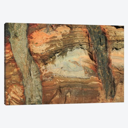 Rocky Volcanic Cliff In The Ponta De Sao Lourenco Nature Reserve, Madeira Canvas Print #CYR20} by Cyril Ruoso Canvas Wall Art