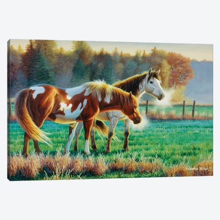 Horse Pasture Canvas Print #CYT104} by Cynthie Fisher Canvas Artwork