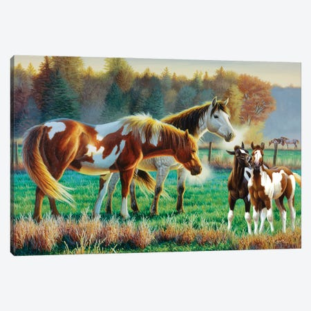 Horse Pasture II Canvas Print #CYT105} by Cynthie Fisher Canvas Wall Art