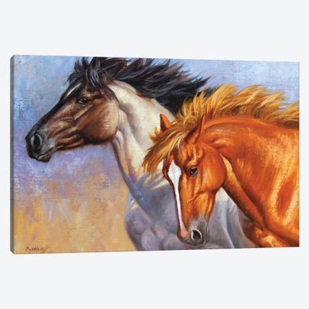 Horse Tou Canvas Print #CYT106} by Cynthie Fisher Canvas Artwork