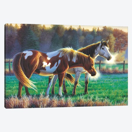 Horses Canvas Print #CYT107} by Cynthie Fisher Canvas Art