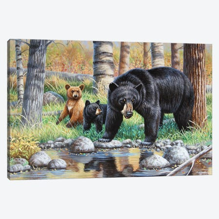 Bear With Cubs III Canvas Print #CYT10} by Cynthie Fisher Canvas Print