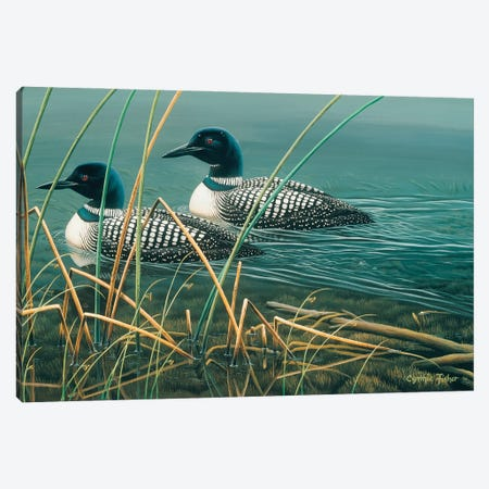 Loon Lake Canvas Print #CYT130} by Cynthie Fisher Canvas Art