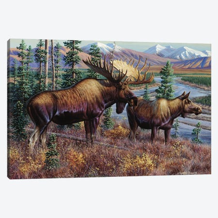 Moose Canvas Print #CYT138} by Cynthie Fisher Canvas Wall Art