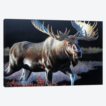 Moose Sb Canvas Print #CYT141} by Cynthie Fisher Art Print