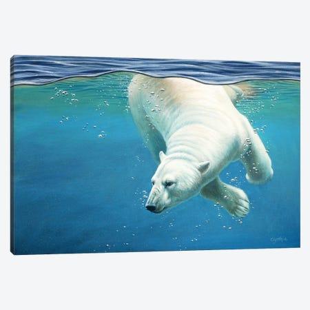 Polar Bear Underwater Canvas Print #CYT155} by Cynthie Fisher Canvas Print