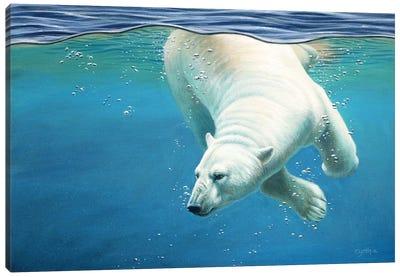 Polar Bear Underwater Canvas Art Print