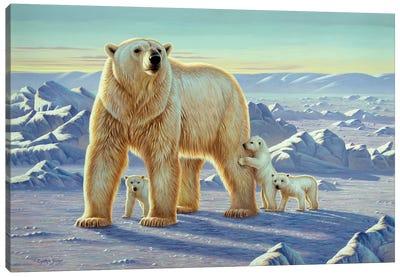 Polar Bear With Cubs Canvas Art Print