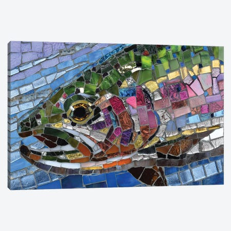Rainbow Trout Glass Mosaic Canvas Print #CYT160} by Cynthie Fisher Canvas Print