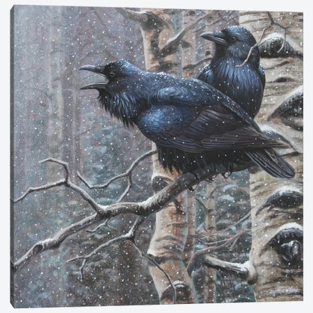 Ravens Canvas Print #CYT161} by Cynthie Fisher Canvas Art Print