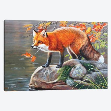 Red Fox Canvas Print #CYT162} by Cynthie Fisher Canvas Art Print