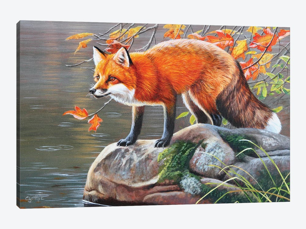 Red Fox by Cynthie Fisher 1-piece Canvas Art