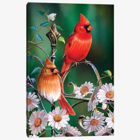 Spring Cardinals II Canvas Print #CYT174} by Cynthie Fisher Canvas Art Print