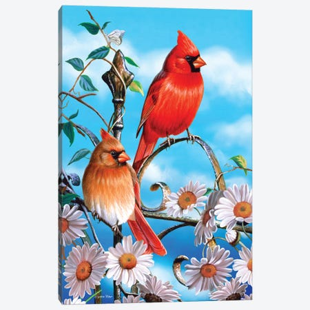 Spring Cardinals III Canvas Print #CYT175} by Cynthie Fisher Canvas Print