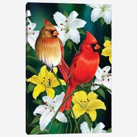Spring Cardinals Lily Canvas Print #CYT176} by Cynthie Fisher Canvas Print