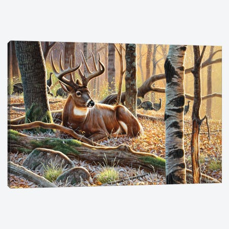 Whitetail And Turkeys Canvas Print #CYT198} by Cynthie Fisher Canvas Art