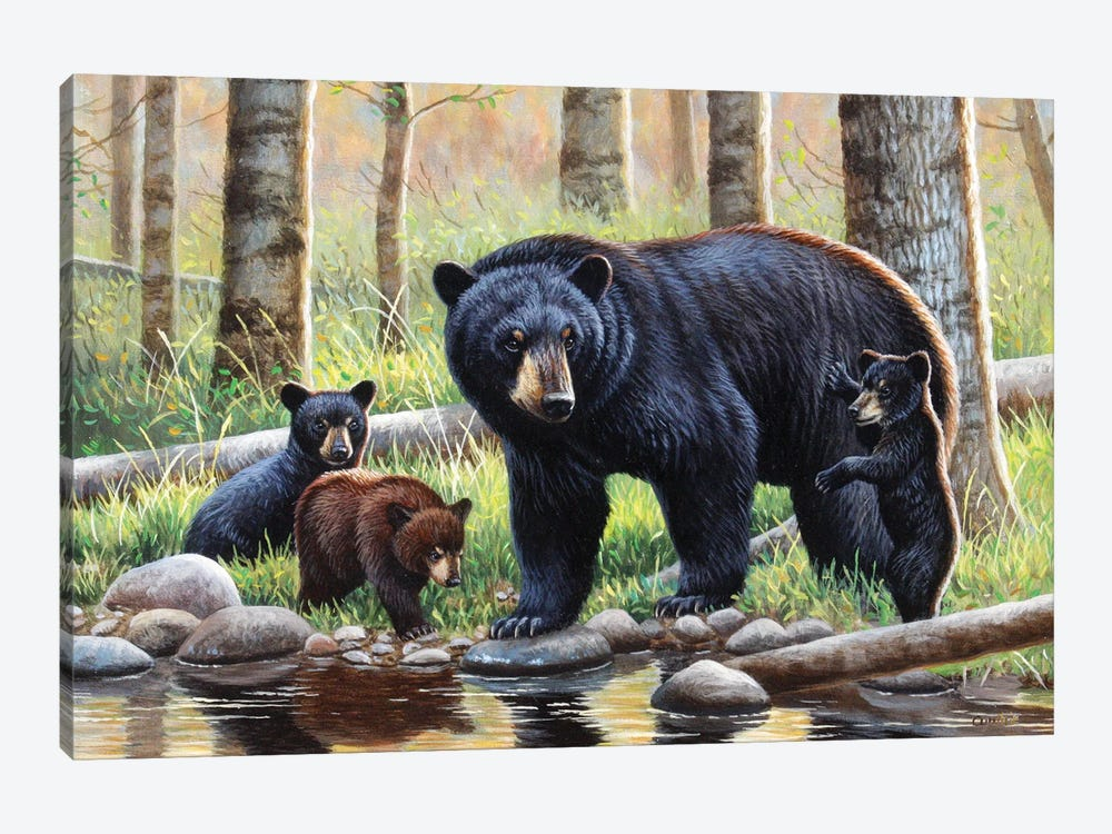 Black Bear With Cubs by Cynthie Fisher 1-piece Canvas Artwork