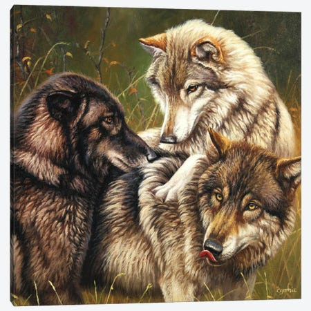 Wolf Pack II Canvas Print #CYT214} by Cynthie Fisher Canvas Wall Art
