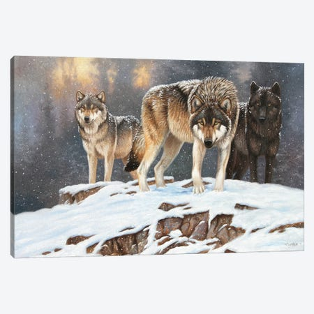 Wolves Canvas Print #CYT215} by Cynthie Fisher Canvas Artwork