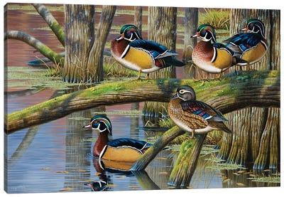 Wood Ducks V Canvas Art Print