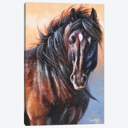 Black Stallion Canvas Print #CYT21} by Cynthie Fisher Canvas Artwork