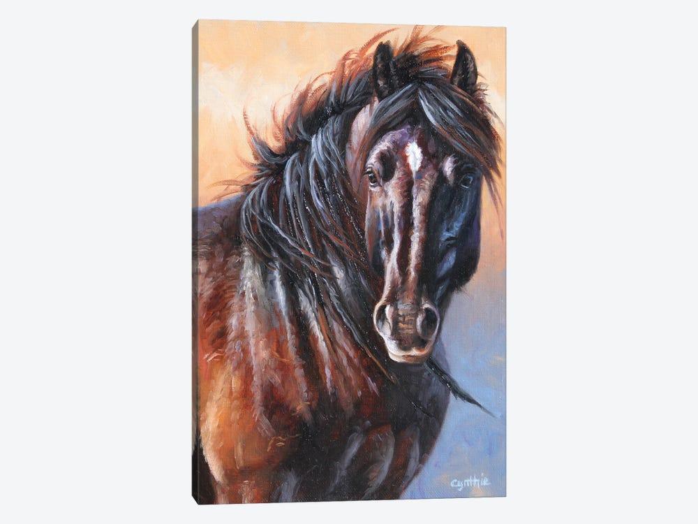 Black Stallion by Cynthie Fisher 1-piece Canvas Art Print