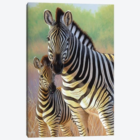 Zebra Mare And Foal Canvas Print #CYT225} by Cynthie Fisher Canvas Print