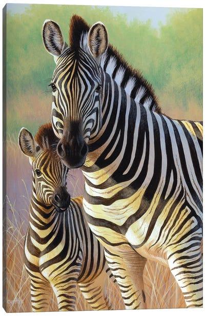 Zebra Mare And Foal Canvas Art Print