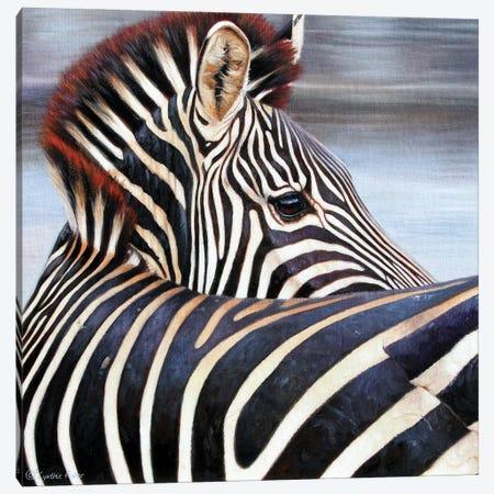 Zebra-A Close Encounter Canvas Print #CYT226} by Cynthie Fisher Canvas Print