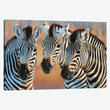 Zebras Canvas Print #CYT227} by Cynthie Fisher Canvas Art Print