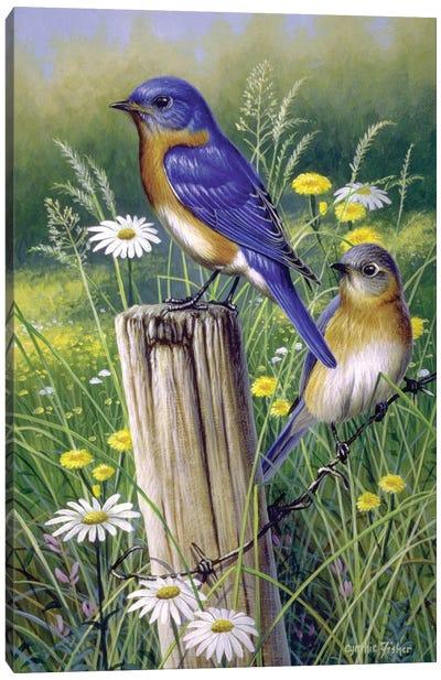 Bluebirds Canvas Art Print