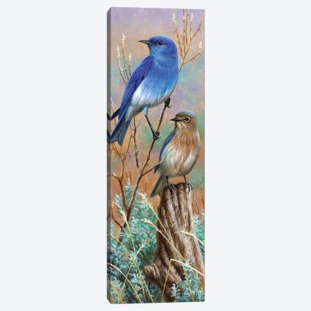 Bluebirds Canvas Print #CYT25} by Cynthie Fisher Canvas Art Print